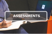 6. Assessments