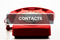 14. Contacts